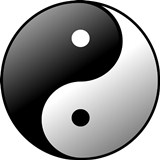 yin-yang in the payments industry